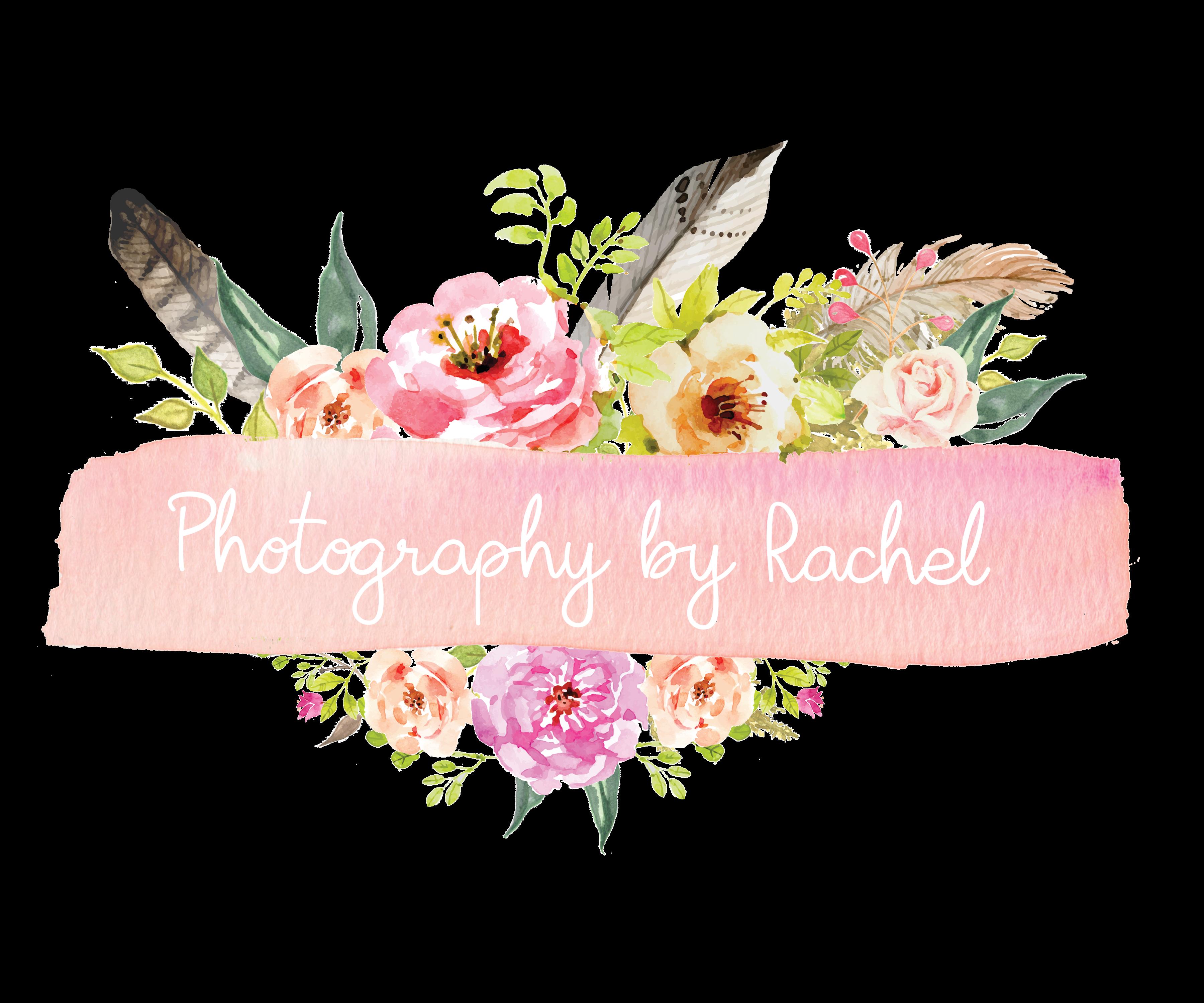 Photography by Rachel