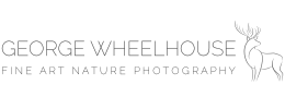 George Wheelhouse | Fine Art Nature Photography