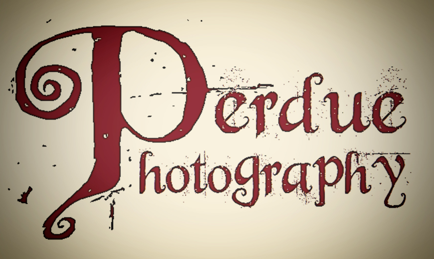 Perdue Photography LLC