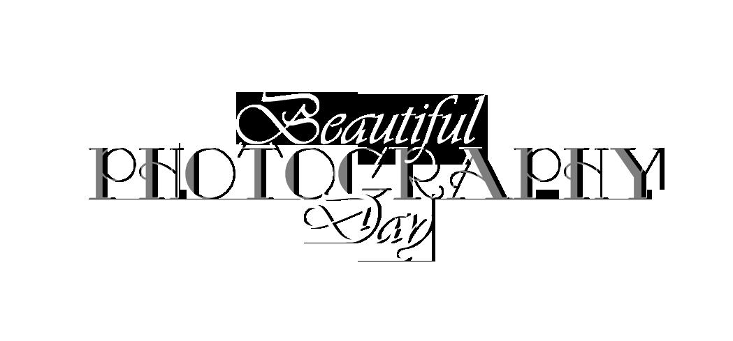 Beautiful Day Photography