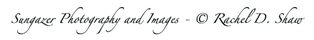 Sungazer Photography and Images