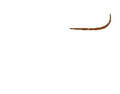 Rosetail