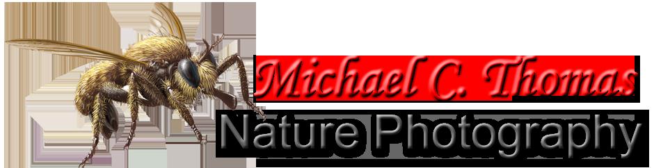 Michael C. Thomas